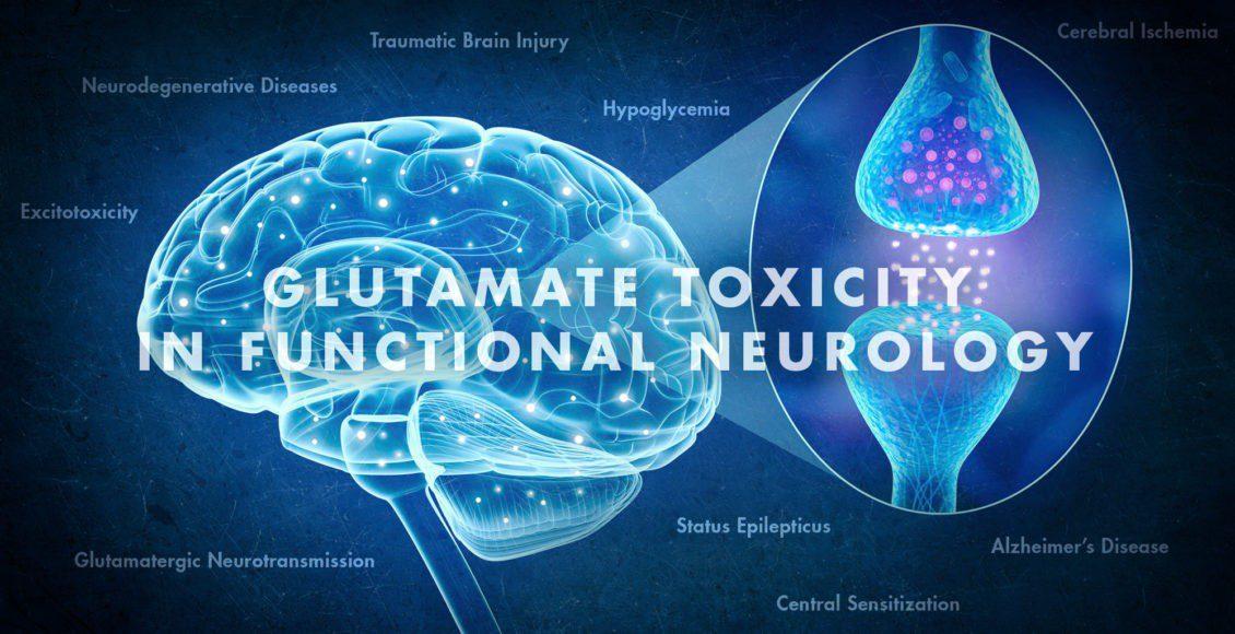 Glutamate Toxicity in Functional Neurology   El Paso, TX Chiropractor