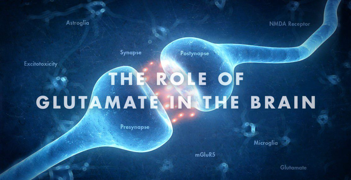 Functional Neurology: The Role of Glutamate in the Brain   El Paso, TX Chiropractor