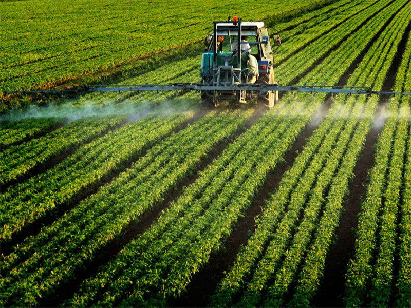 pesticide_ilfede-istockphoto-800