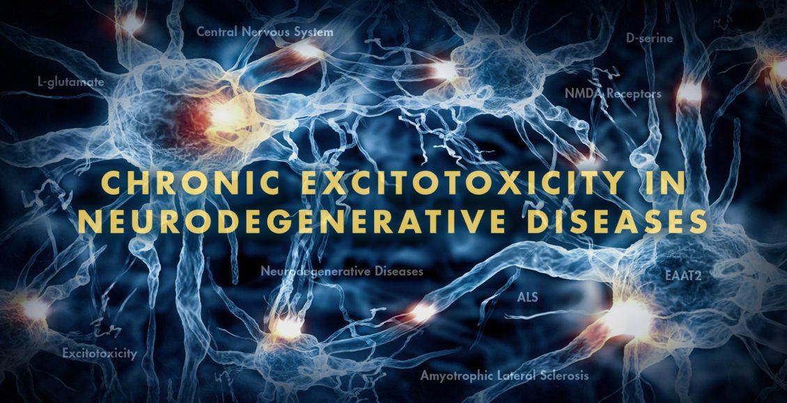 Neurología funcional: excitotoxicidad crónica en enfermedades neurodegenerativas Parte 2 | El Paso, TX Quiropráctico