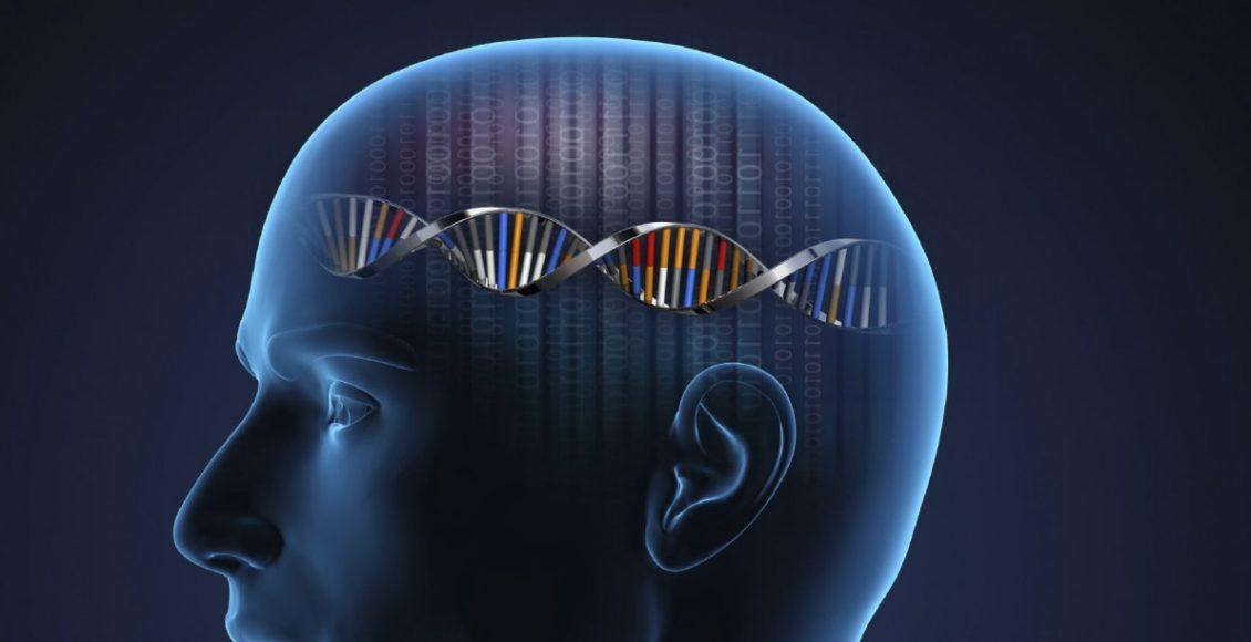 Neurología Funcional: Activación Nrf2 para Enfermedades Neurológicas   El Paso, TX Quiropráctico