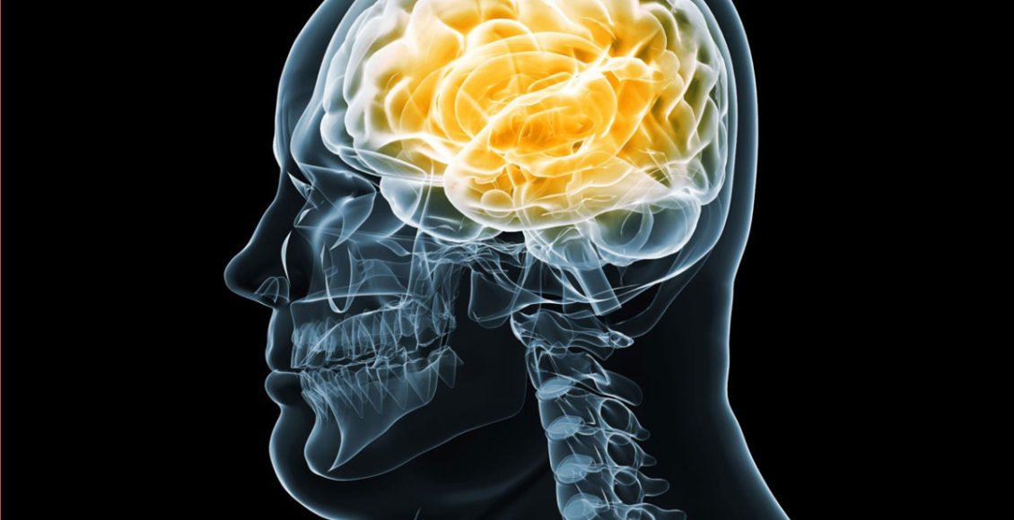 Neurología funcional: salud del cerebro y obesidad   Quiropráctico en El Paso, TX