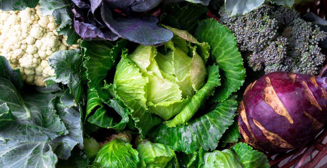 Good Foods to Help Promote Longevity | El Paso, TX Chiropractor